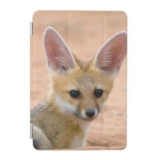 Cape Fox (Vulpes Chama) Pup Peers Inquisitively iPad Mini Cover