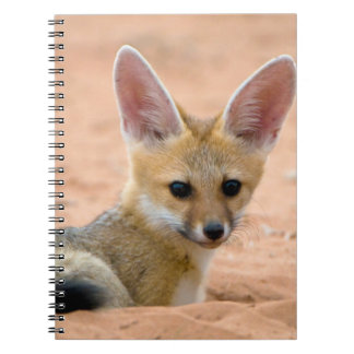 Cape Fox (Vulpes Chama) Pup Peers Inquisitively Notebooks