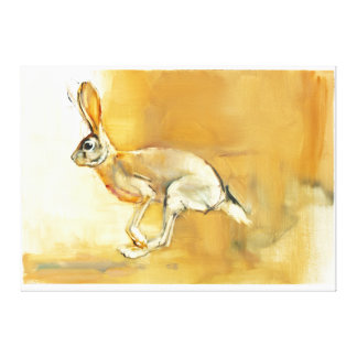 Cape Hare 2010 2 Canvas Print