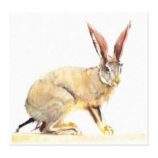 Cape Hare 2010 Canvas Print