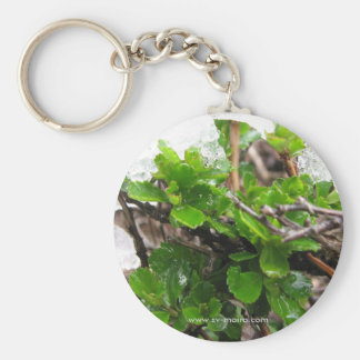 Cape Horn, Chile 3 Basic Round Button Key Ring