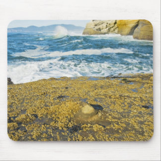 Cape Kiwanda And The Pacific Ocean Mouse Mat