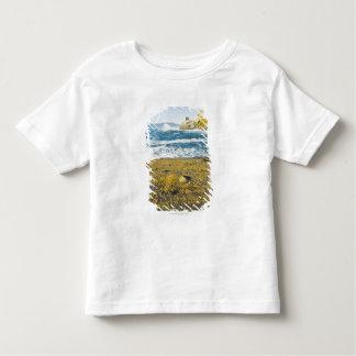 Cape Kiwanda And The Pacific Ocean Shirt