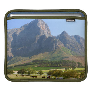 Cape Town, Western Cape, South Africa iPad Sleeve
