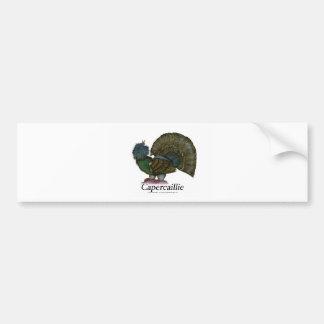 Capercaillie bird, tony fernandes bumper sticker