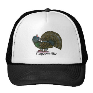 Capercaillie bird, tony fernandes cap