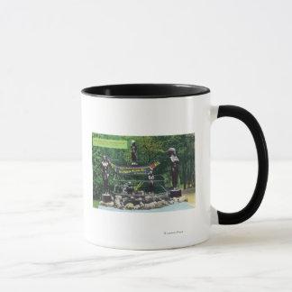 Capilano Canyon Indian Wishing Well View Mug