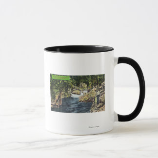 Capilano Canyon View of the Salmon Pool Mug