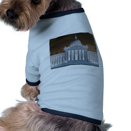 Capital Dog Shirt