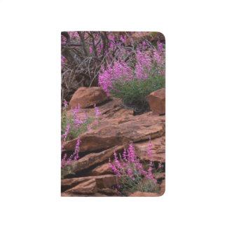 Capitol Reef National Park, Utah, USA Journal