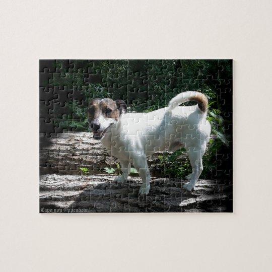 Capo von Oppenheim Jack Russell Terrier, Dog Jigsaw