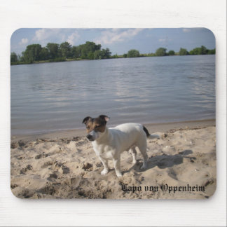 Capo von Oppenheim Jack Russell Terrier, Dog Mouse Pad