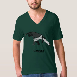 Capoeira Moves - rastera Tshirt