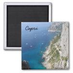 Capri, Italy Refrigerator Magnet