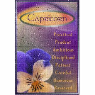Capricorn Photo Sculpture Badge