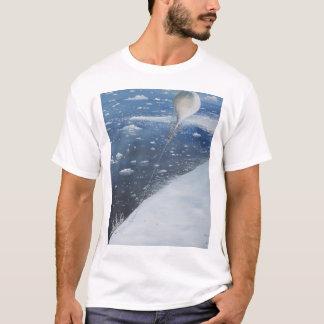 Captain Scott Antarctica's first Aeronaut. 4th T-Shirt