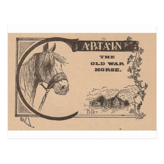 Captain The Old War Horse Postcard
