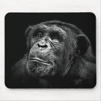 """Captive Exposure"" Wildlife Conservation Chimp Art Mouse Pads"