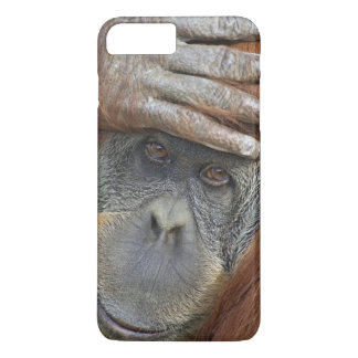 Captive female Sumatran Orangutan iPhone 8 Plus/7 Plus Case