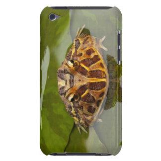 Captive, Nebraska, USA iPod Touch Case
