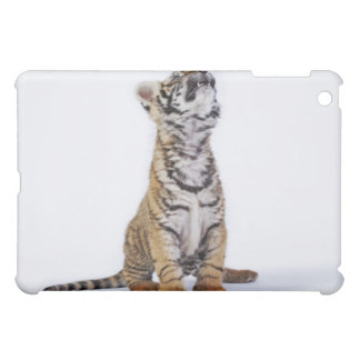 Captive, South Africa 2 Case For The iPad Mini
