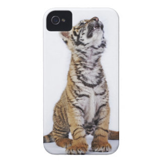 Captive, South Africa 2 iPhone 4 Case