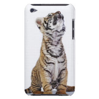 Captive, South Africa 2 iPod Case-Mate Cases