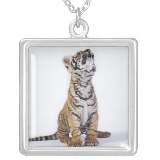 Captive, South Africa 2 Silver Plated Necklace