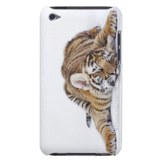 Captive, South Africa 3 iPod Case-Mate Cases