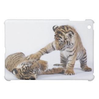 Captive, South Africa iPad Mini Cases