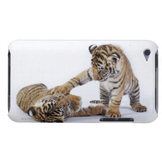 Captive, South Africa iPod Touch Cover
