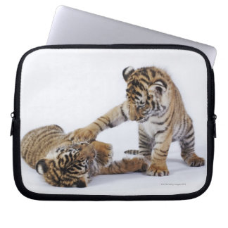 Captive, South Africa Laptop Computer Sleeve