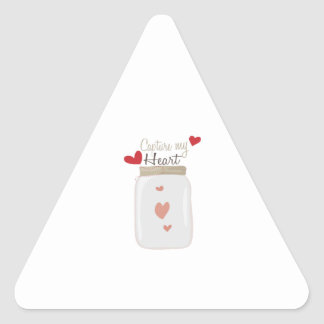 Capture My Heart Triangle Stickers