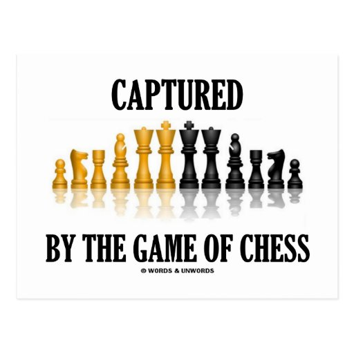 Captured By The Game Of Chess (Reflective Chess) Postcards