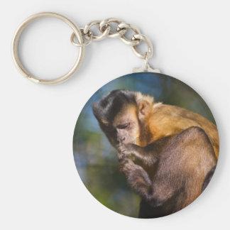 Capuchin Monkey Basic Round Button Key Ring