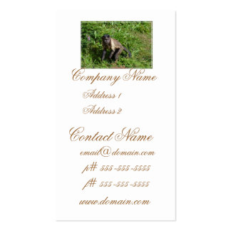Capuchin Monkey Mugging for the Camera Double-Sided Standard Business Cards (Pack Of 100)