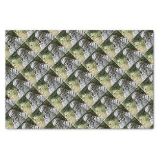 Capucin Monk Tissue Paper
