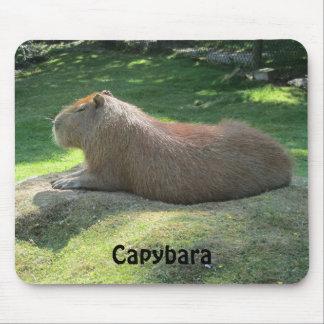 Capybara - Giant Rodent Mousepad