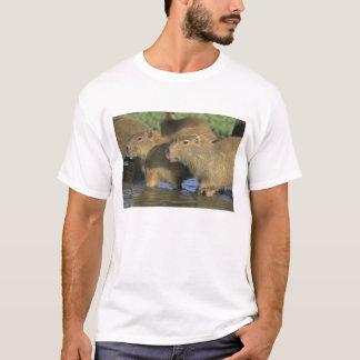 Capybara, Hydrochaeris hydrochaeris), world's T-Shirt