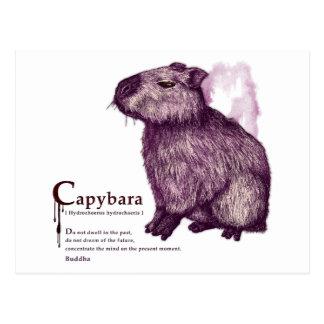 capybara - wine はがき
