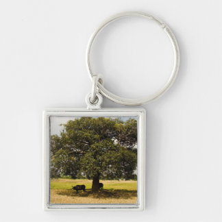 Carabao Under a Tree Keychain