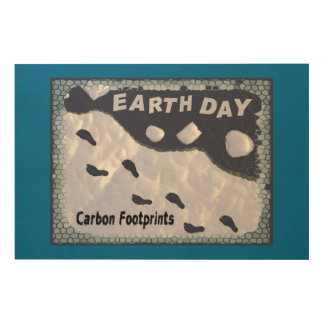Carbon Footprints Wood Canvases