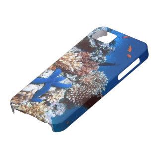 Carcasa IPhone 5 coral 2 iPhone 5 Cobertura