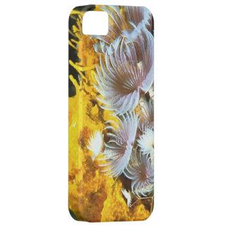 Carcasa iPhone 5 modelo coral iPhone 5 Case-Mate Carcasa