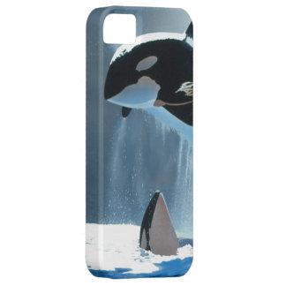 Carcasa iPhone 5 modelo orcas iPhone 5 Carcasas
