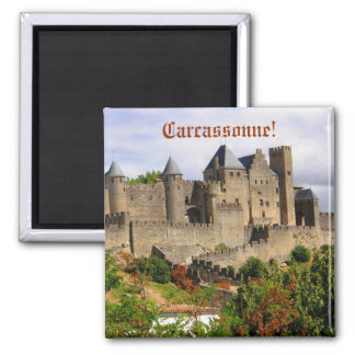 Carcassonne fortress in France Magnet