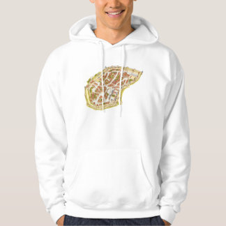 Carcassonne France. Aerial view Hoodie