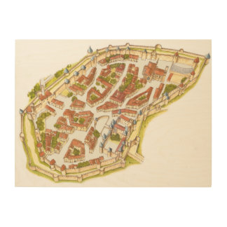 Carcassonne France. Aerial view Wood Wall Art