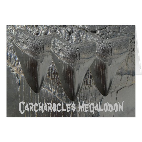 Carcharocles megalodon card