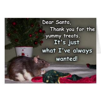 Card: Christmas Rat Dream Come True! Card